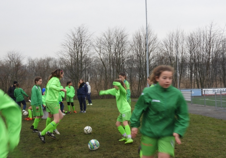 Holland Cup